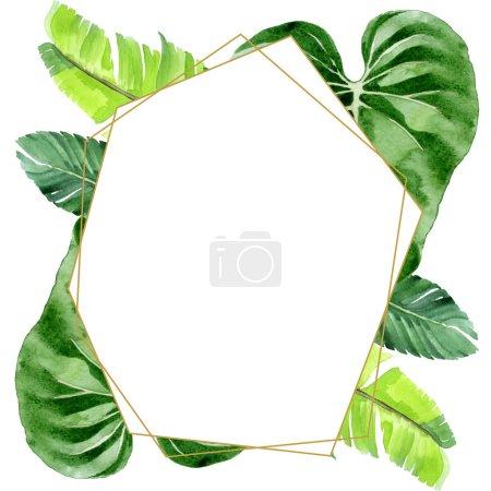 Photo pour Feuilles tropicales exotiques de palmier hawaïen d'isolement sur le blanc. Ensemble d'illustration de fond d'aquarelle. Ornement de cadre avec l'espace de copie. - image libre de droit