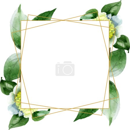 Photo for White camellia flowers with green leaves isolated on white. Watercolor background illustration set. Frame border ornament with copy space. - Royalty Free Image
