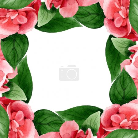 Photo pour Pink camellia flowers with green leaves isolated on white. Watercolor background illustration set. Frame border ornament with copy space. - image libre de droit