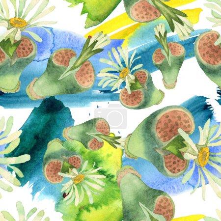 Photo pour Fleur botanique florale succulente. Fleur sauvage sauvage de feuille de source. Ensemble d'illustration d'aquarelle. Aquarelle de dessin à l'aquarelle. Modèle de fond sans couture. Texture d'impression de papier peint de tissu. - image libre de droit