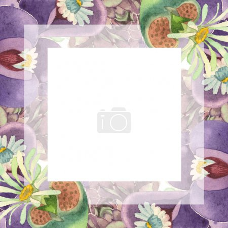 Photo for Succulent floral botanical flower. Wild spring leaf wildflower isolated. Watercolor background illustration set. Watercolour drawing fashion aquarelle isolated. Frame border ornament square. - Royalty Free Image