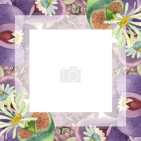 Photo pour Succulente fleur floral botanique. Wildflower de feuille de printemps sauvage isolé. Aquarelle de fond illustration ensemble. Aquarelle de mode dessin aquarelle isolé. Place de cadre bordure ornement. - image libre de droit