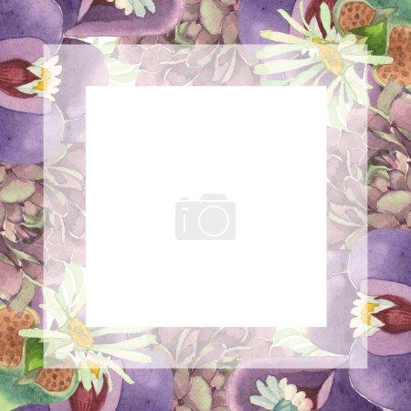 Photo pour Succulente fleur floral botanique. Wildflower de feuille de printemps sauvage isolé. Aquarelle de fond illustration ensemble. Aquarelle de mode dessin aquarelle isolé. Place de cadre bordure ornement. - image libre de droit