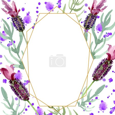 Photo for Purple lavender floral botanical flowers. Wild spring leaf wildflower. Watercolor background illustration set. Watercolour drawing fashion aquarelle. Frame border crystal ornament square. - Royalty Free Image
