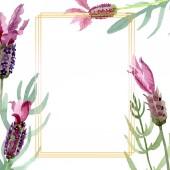 """Постер, картина, фотообои """"Фиолетовые цветочные растительные цветы лаванды. Набор фоновых иллюстраций акварели. Рама границы орнамент площади."""""""