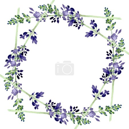 Photo for Violet lavender floral botanical flower. Wild spring leaf wildflower isolated. Watercolor background illustration set. Watercolour drawing fashion aquarelle isolated. Frame border ornament square. - Royalty Free Image