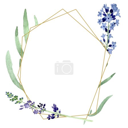 Photo pour Violet fleur botanique florale lavande. Feuille sauvage de printemps fleur sauvage isolée. Ensemble d'illustration de fond aquarelle. Aquarelle dessin mode aquarelle. Cadre bordure cristal ornement carré . - image libre de droit