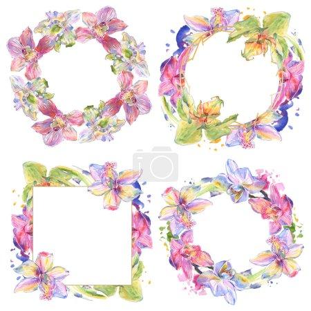 Foto de Flores botánicas florales de orquídeas. Hoja de primavera silvestre wildflower aislado. Conjunto de ilustraciones de fondo de acuarela. Acuarela dibujando moda acuarela aislada. Marco borde ornamento cuadrado. - Imagen libre de derechos