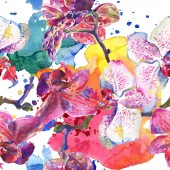 """Постер, картина, фотообои """"Орхидея цветочные ботанические цветы. Набор фоновых иллюстраций акварели. Бесшовный фоновый шаблон."""""""