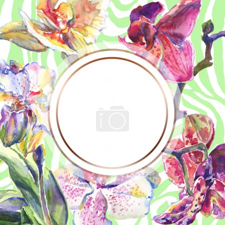 Photo for Orchid floral botanical flowers. Wild spring leaf wildflower isolated. Watercolor background illustration set. Watercolour drawing fashion aquarelle isolated. Frame border ornament square. - Royalty Free Image