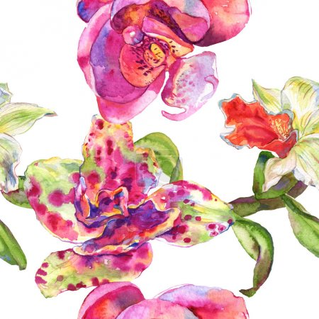 Foto de Flor botánica floral de orquídea. Flor silvestre de la hoja de primavera wildflower. Conjunto de ilustraciones de acuarela. Acuarela dibujando moda acuarela. Patrón de fondo sin costuras. Textura de impresión de fondo de pantalla de tela. - Imagen libre de derechos