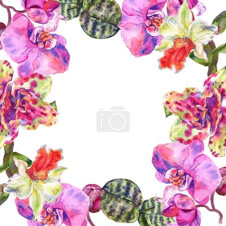 Foto de Flor botánica floral de orquídea. Hoja de primavera silvestre wildflower aislado. Conjunto de ilustraciones de fondo de acuarela. Acuarela dibujando moda acuarela aislada. Marco borde ornamento cuadrado. - Imagen libre de derechos