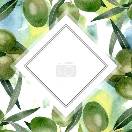 Photo pour Branche d'olivier aux fruits noirs et verts. Ensemble d'illustration de fond aquarelle. Aquarelle dessin mode aquarelle isolé. Cadre bordure ornement carré . - image libre de droit