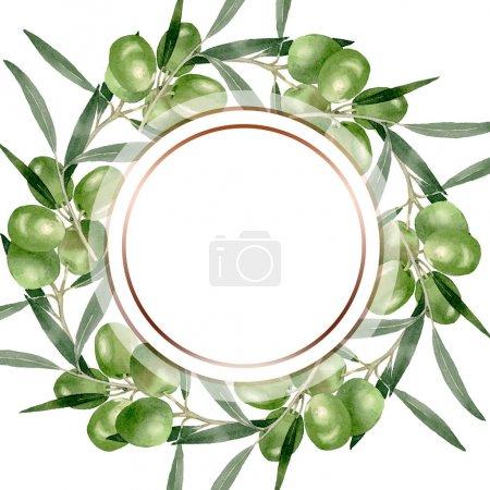 Olivenzweig mit schwarzen und grünen Früchten. Aquarell Hintergrundillustration Set. Rahmen Rand Ornament Quadrat.