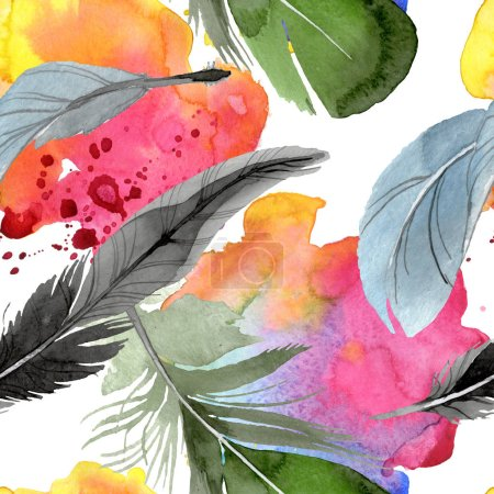 Photo pour Plume d'oiseau de l'aile isolée. Ensemble d'illustration de fond aquarelle. Aquarelle dessin mode aquarelle isolé. Modèle de fond sans couture. Texture d'impression papier peint tissu . - image libre de droit