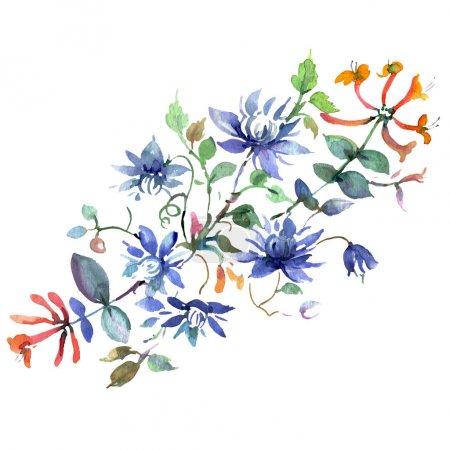 Photo pour Bouquet floral fleurs botaniques. Fleur sauvage de neige sauvage de feuille de source d'isolement. Ensemble d'illustration de fond d'aquarelle. Aquarelle de mode de dessin d'aquarelle d'aquarelle d'aquarelle. Élément d'illustration de bouquets d'isolement. - image libre de droit