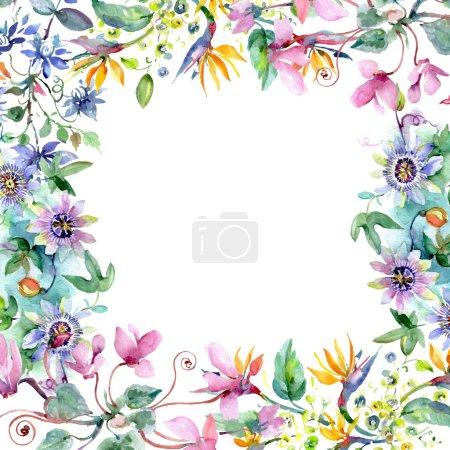 Photo pour Bouquet floral de fleurs botaniques. Feuille sauvage de printemps fleur sauvage isolée. Ensemble d'illustration de fond aquarelle. Aquarelle dessin mode aquarelle isolé. Cadre bordure ornement carré . - image libre de droit