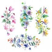 """Постер, картина, фотообои """"Букет цветочных ботанических цветов. Набор фоновых иллюстраций акварели. Изолированные букеты иллюстрация элемент."""""""