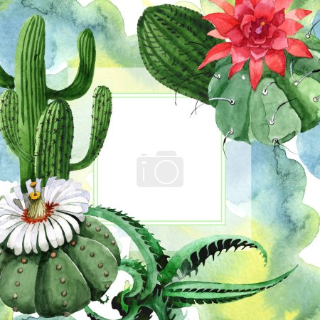 Photo pour Green cactus floral botanical flower. Wild spring wildflower isolated. Watercolor background illustration set. Watercolour drawing fashion aquarelle isolated. Frame border ornament square. - image libre de droit