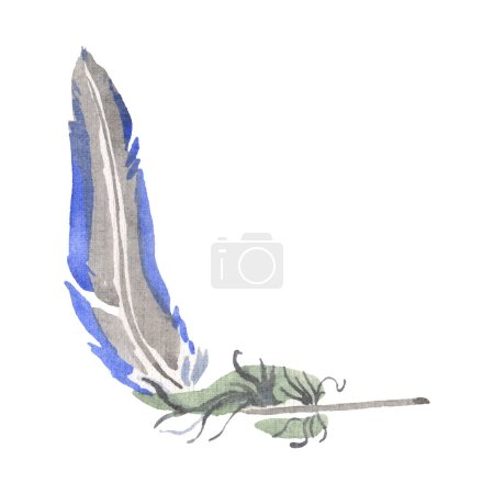 Photo pour Plume d'oiseau aquarelle de l'aile isolée. Plume Aquarelle pour fond, texture, motif enveloppant, cadre ou bordure. Élément isolé d'illustration de plumes . - image libre de droit