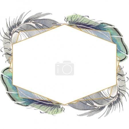 Photo pour Plume d'oiseau aquarelle de l'aile isolée. Plume Aquarelle pour fond, texture, motif enveloppant, cadre ou bordure. Cadre bordure ornement carré . - image libre de droit
