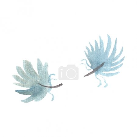Photo for Watercolor bird feather from wing isolated. Aquarelle feather for background, texture, wrapper pattern, frame or border. Isolated feather illustration element. - Royalty Free Image