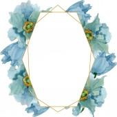 """Постер, картина, фотообои """"Голубые цветы мака Цветочные ботанический. Акварель фон иллюстрации набора. Площадь орнамент границы кадра."""""""