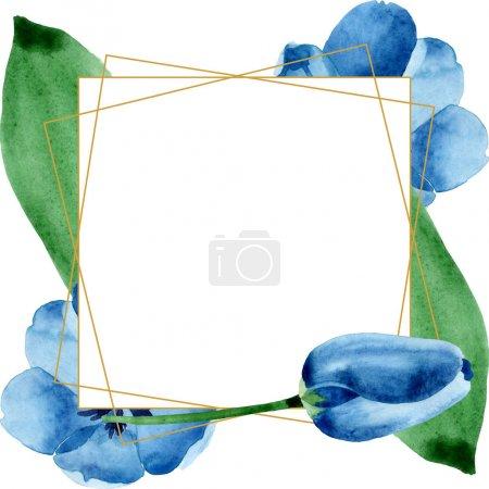Photo pour Fleurs botaniques florales de tulipe bleue. Feuille sauvage de printemps fleur sauvage isolée. Ensemble d'illustration de fond aquarelle. Aquarelle dessin mode aquarelle. Cadre bordure cristal ornement carré . - image libre de droit