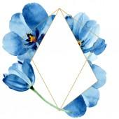 """Постер, картина, фотообои """"Синий тюльпан цветочные ботанические цветы. Набор фоновых иллюстраций акварели. Рама границы орнамент площади."""""""