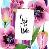 "Постер, картина, фотообои ""Pink tulips floral botanical flowers. Watercolor background illustration set. Frame border ornament square."""