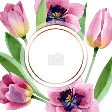 Photo pour Fleurs botaniques florales de tulipes roses. Fleur sauvage de neige sauvage de feuille de source d'isolement. Ensemble d'illustration de fond d'aquarelle. Aquarelle de mode de dessin d'aquarelle d'aquarelle d'aquarelle. Carré d'ornement de bordure de cadre. - image libre de droit