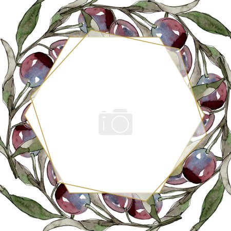 Photo for Olive branch with black and green fruit. Watercolor background illustration set. Watercolour drawing fashion aquarelle isolated. Frame border crystal ornament square. - Royalty Free Image