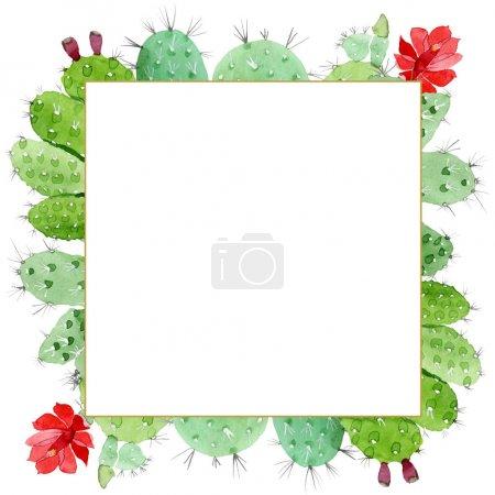 Photo pour Fleurs botaniques florales de cactus vert. Fleur sauvage sauvage de feuille de source. Ensemble d'illustration de fond d'aquarelle. Aquarelle de dessin à l'aquarelle. Carré d'ornement de bordure de cadre. - image libre de droit
