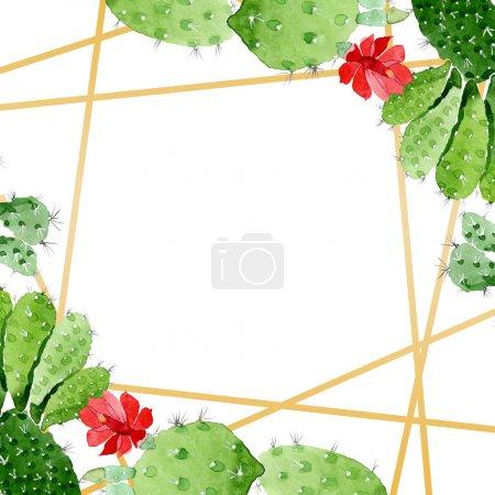 Photo pour Fleurs botaniques florales de cactus vert. Fleur sauvage sauvage de feuille de source. Ensemble d'illustration de fond d'aquarelle. Aquarelle de dessin à l'aquarelle. Carré d'ornement de cristal de bordure de cadre. - image libre de droit