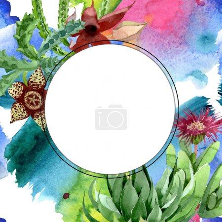 Photo pour Fleur botanique florale de cactus vert. Fleur sauvage de neige sauvage de feuille de source d'isolement. Ensemble d'illustration de fond d'aquarelle. Aquarelle de mode de dessin d'aquarelle d'aquarelle d'aquarelle. Carré d'ornement de bordure de cadre. - image libre de droit