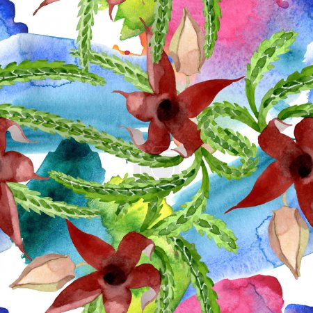 Photo pour Fleur botanique florale de cactus vert. Fleur sauvage sauvage de feuille de source. Ensemble d'illustration d'aquarelle. Aquarelle de dessin à l'aquarelle. Modèle de fond sans couture. Texture d'impression de papier peint de tissu. - image libre de droit