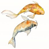 """Постер, картина, фотообои """"Watercolor aquatic underwater colorful tropical fish set. Red sea and exotic fishes inside: Goldfish Isolated."""""""