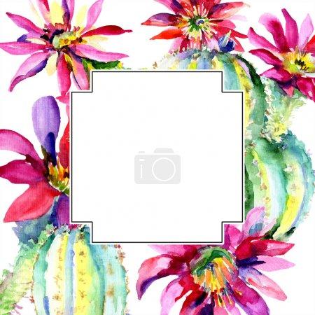 Foto de Cactus verde. Flor botánica floral. Hoja de primavera silvestre wildflower aislado. Conjunto de ilustraciones de fondo de acuarela. Acuarela dibujando moda acuarela aislada. Marco borde ornamento cuadrado. - Imagen libre de derechos