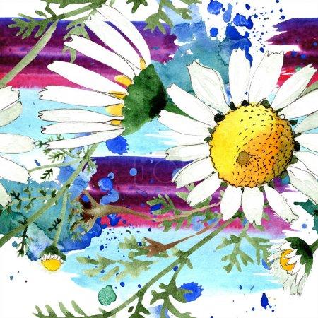 Photo pour Fleur botanique florale de camomille. Feuille sauvage de source d'isolement. Ensemble d'illustration d'aquarelle. Aquarelle de dessin à l'aquarelle. Modèle de fond sans couture. Texture d'impression de papier peint de tissu. - image libre de droit