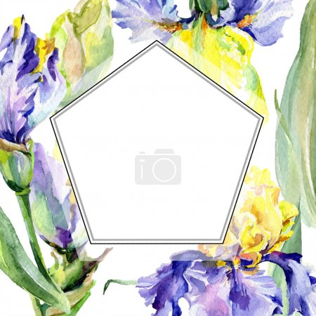 Photo pour Iris jaune pourpre. Fleur botanique florale. Fleur sauvage de neige sauvage de feuille de source d'isolement. Ensemble d'illustration de fond d'aquarelle. Aquarelle de dessin à l'aquarelle. Carré d'ornement de bordure de cadre. - image libre de droit