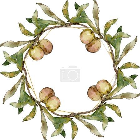 Photo pour Ensemble d'illustration d'illustration d'aquarelle d'olives vertes. Aquarelle de mode de dessin d'aquarelle d'aquarelle d'aquarelle. Feuille verte. Feuillage floral de jardin botanique de plante de feuille. Carré d'ornement de bordure de cadre. - image libre de droit