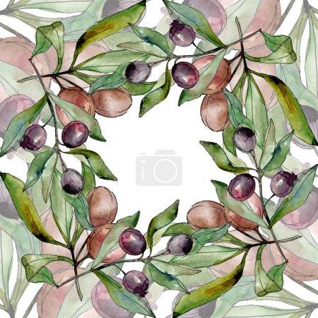 Photo pour Ensemble noir d'illustration d'illustration d'aquarelle d'olives. Aquarelle de mode de dessin d'aquarelle d'aquarelle d'aquarelle. Feuille verte. Feuillage floral de jardin botanique de plante de feuille. Carré d'ornement de bordure de cadre. - image libre de droit