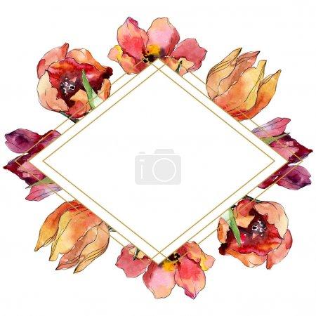 Photo pour Fleur botanique florale rouge de tulipe. Fleur sauvage de neige sauvage de feuille de source d'isolement. Ensemble d'illustration de fond d'aquarelle. Aquarelle de mode de dessin d'aquarelle d'aquarelle d'aquarelle. Carré d'ornement de bordure de cadre. - image libre de droit
