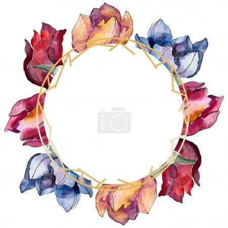 Photo pour Fleurs botaniques florales de tulipes. Feuille sauvage de printemps fleur sauvage isolée. Ensemble d'illustration de fond aquarelle. Aquarelle dessin mode aquarelle isolé. Cadre bordure cristal ornement carré . - image libre de droit