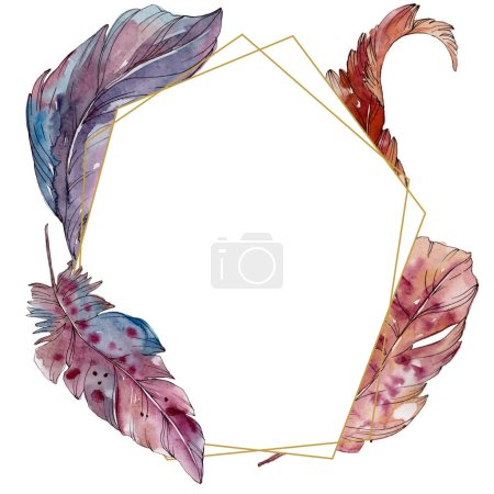 Photo for Colorful bird feather from wing isolated. Watercolor background illustration set. Watercolour drawing fashion aquarelle isolated. Frame border ornament square. - Royalty Free Image