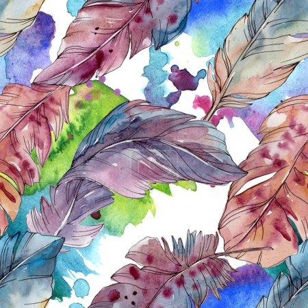 Foto de Pluma de colorido pájaro de ala aislado. Conjunto de ilustración de fondo de acuarela. Acuarela dibujo moda aquarelle aislado. Patrón de fondo transparente. Textura impresión de papel pintado de tela. - Imagen libre de derechos