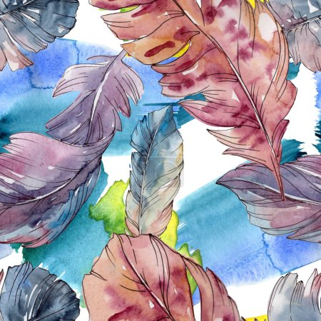 Photo for Colorful bird feather from wing isolated. Watercolor background illustration set. Watercolour drawing fashion aquarelle isolated. Seamless background pattern. Fabric wallpaper print texture. - Royalty Free Image