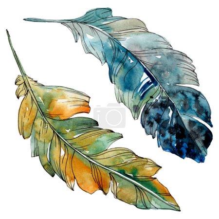 Photo pour Plume colorée d'oiseau de l'aile isolée. Ensemble d'illustration de fond d'aquarelle. Aquarelle de mode de dessin d'aquarelle d'aquarelle d'aquarelle. Élément isolé d'illustration de plume. - image libre de droit