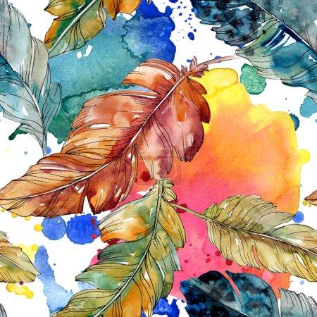 Photo pour Plume d'oiseau colorée de l'aile isolée. Ensemble d'illustration de fond aquarelle. Aquarelle dessin mode aquarelle isolé. Modèle de fond sans couture. Texture d'impression papier peint tissu . - image libre de droit
