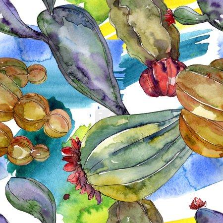 Foto de Flores botánicas florales de cactus. Flor silvestre de la hoja de primavera wildflower. Conjunto de ilustraciones de acuarela. Acuarela dibujando moda acuarela. Patrón de fondo sin costuras. Textura de impresión de fondo de pantalla de tela. - Imagen libre de derechos